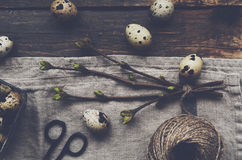 Quail eggs on rustic wooden table Royalty Free Stock Photos