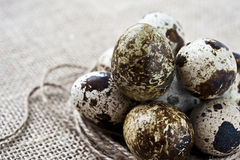 Quail eggs on sack background. Closeup quail eggs on sack background Stock Photo