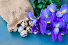 Quail eggs in sack and irises Royalty Free Stock Images