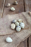Quail Eggs on sacking and wooden table, rustic style Stock Photography