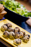 Quail eggs and salad. A plate of quail eggs, vegetable salad in the background Stock Photography