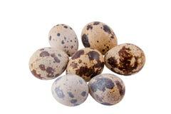 Quail eggs. Seven quail eggs on a white background Royalty Free Stock Photos