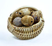 Quail eggs in the small basket Stock Photos