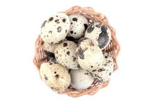 quail eggs in a small wicker basket. Top view. on a white background. isolated stock image