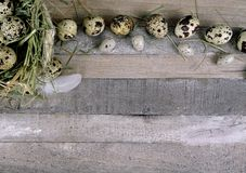 Quail eggs with stone egg decoration at wooden background stock photography