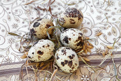 Quail eggs in the straw. Quail eggs in the straw and the napkin Stock Images