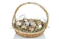Quail eggs with straw Royalty Free Stock Photo