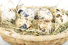 Quail eggs with straw Royalty Free Stock Images