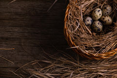 Quail eggs in straw basket on rustic wooden background Stock Photography