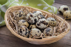 Quail eggs with straw in basket Royalty Free Stock Photo