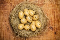 Quail eggs on straw nest. On a wooden table stock photography