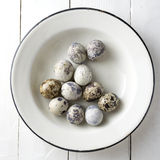 Quail eggs on the table Stock Images