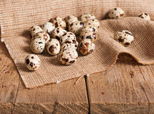 Quail eggs on table Stock Photography
