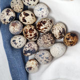 Quail eggs on the table Stock Image