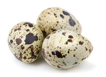 Quail eggs. Three quail eggs isolated on white stock image