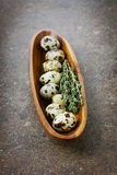 Quail eggs with a thyme in a wooden cup Royalty Free Stock Image