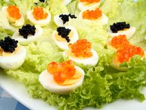Quail eggs topped with salmon, trout and sturgeon caviar Stock Photography