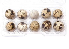 Quail eggs in transparent plastic container isolated on white Stock Images