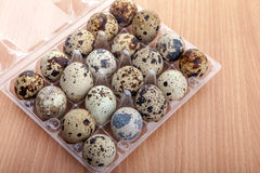 Quail eggs in transparent plastic container on wooden table Stock Photos