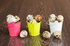 The quail eggs in a tray on a wooden table Royalty Free Stock Images