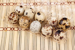 The quail eggs in a tray on a wooden table Stock Photos