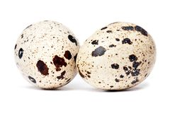 Quail eggs. Two small quail eggs on white background Stock Image