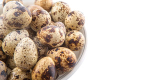 Quail Eggs VII Royalty Free Stock Images
