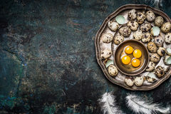 Quail eggs in vintage plate on rustic background, top view, place for text. Quail eggs cooking Stock Photo