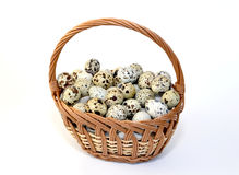 Quail eggs in a wattled basket on a white background Stock Photos