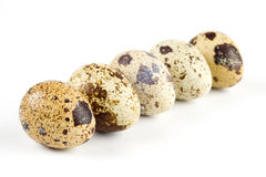 Quail eggs. On a white background Royalty Free Stock Photography