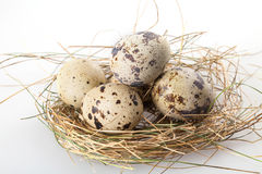 Quail eggs on a white Royalty Free Stock Photography