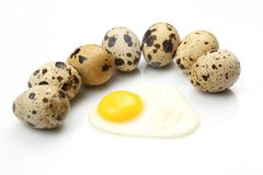 Quail eggs on white background around fried eggs Royalty Free Stock Image