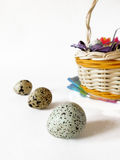 Quail eggs on a white background. Quail eggs and a basket on a white background. Close-up Royalty Free Stock Images