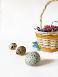 Quail eggs on a white background. Quail eggs and a basket on a white background. Close-up Royalty Free Stock Photos
