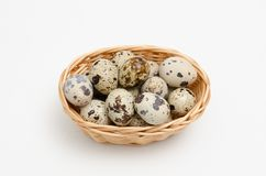 Quail eggs on a white background stock photography