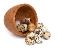 Quail eggs  on white background Stock Photos