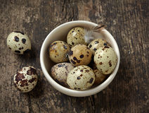 Quail eggs Royalty Free Stock Photos