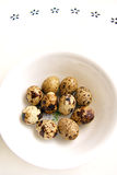 Quail eggs in white bowl Royalty Free Stock Image