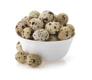 Quail eggs on white Stock Photos
