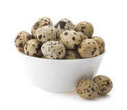 Quail eggs on white Stock Images