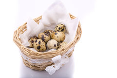 Quail eggs and white feathers in the basket Stock Photo