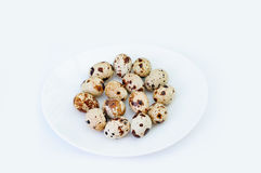 Quail eggs on a white plate. The quail eggs on a white plate Royalty Free Stock Photo