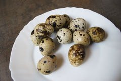 Quail eggs on a white plate. Quail eggs on a white plate on the brown wooden background Royalty Free Stock Photos