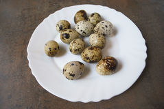 Quail eggs on a white plate. Quail eggs on a white plate on the brown wooden background Stock Photo