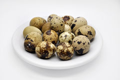 Quail eggs on a white plate concept food. A few quail eggs on a white plate concept food Stock Photos