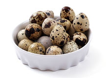 Quail eggs on a white plate Stock Photography