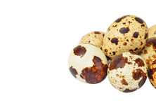 Quail eggs on white Royalty Free Stock Images