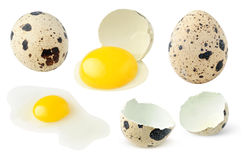 Quail eggs whole and broken collection Royalty Free Stock Photos