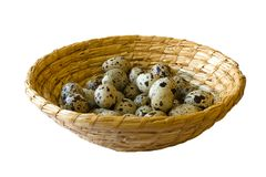 Quail eggs in wicker basket Stock Image
