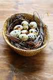 Quail eggs in a wicker basket Stock Photos